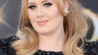 Bild von Adele Hair Style: Classic Beauty on the Red Carpet