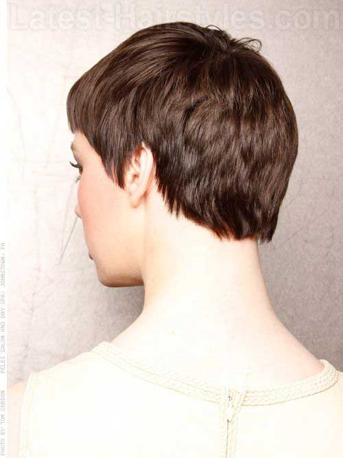 Back Of Very Short Pixie Cut