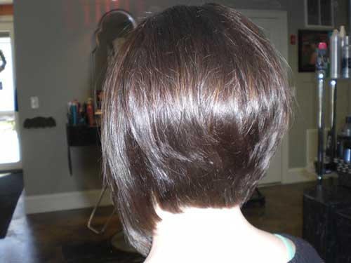 Back View of Bob Hairstyles-14