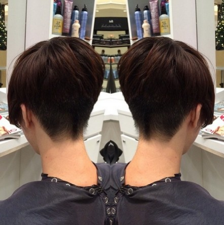 Chic Short Hairstyle Back View