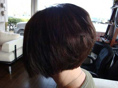 Back View Of Dark Bob Haircuts