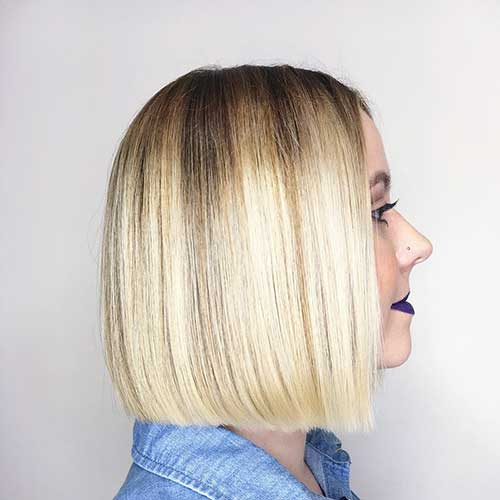Short Straight Hairstyle