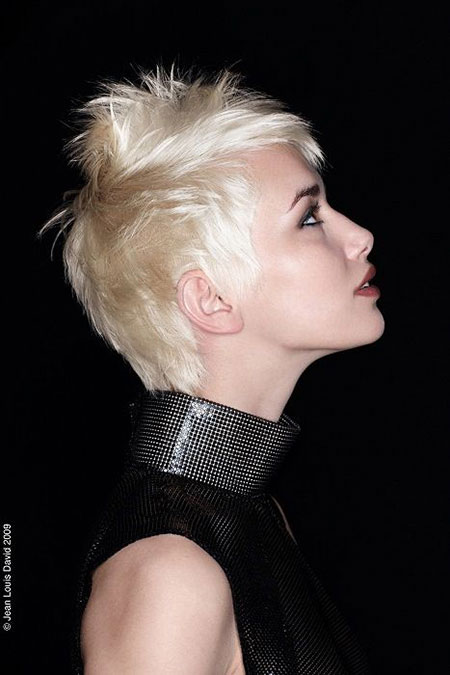 Charming Pixie Cut with Spiky Top
